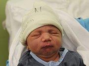 Dominik Žigmund se narodil Ivaně Žigmundové z Děčína 11. ledna v 6.02 v děčínské porodnici. Vážil 3,1 kg.
