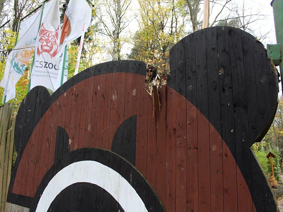 Kvůli vichřici je uzavřená zoo v Děčíně.