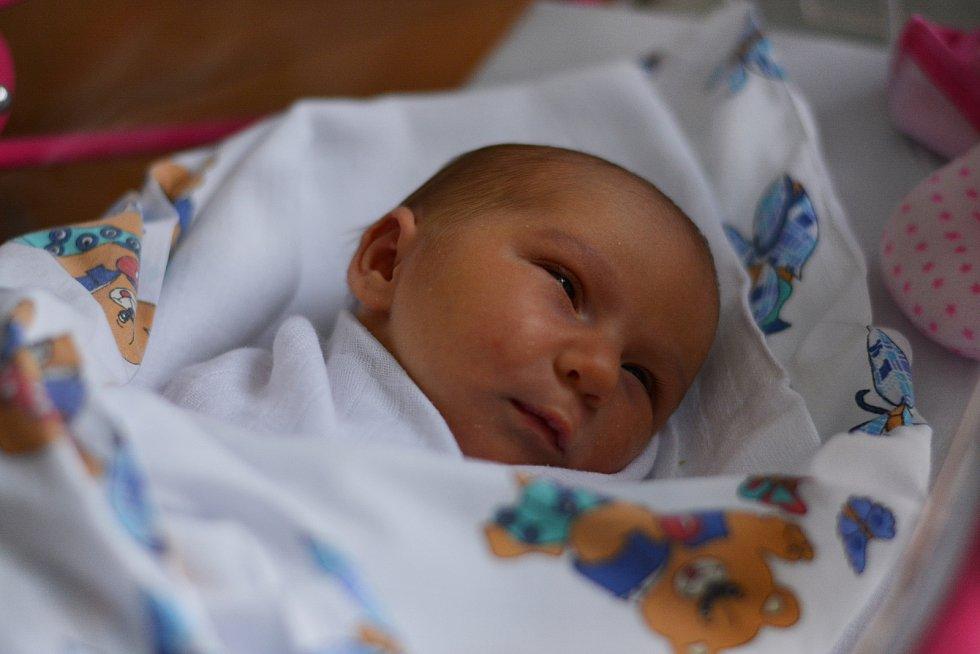 Rodičům Kateřině Johnové a Tomáši Klímovi z Děčínase 30. října v 8.42 v děčínské porodnici narodila dcera Dominika Klímová. Měřila 49 cm a vážila 3,4 kg.