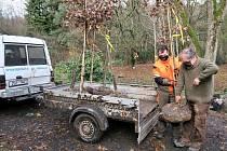 Ředitel školy Rudolf Sochor (vpravo) a Jan Maščuk, student třetího ročníku během nakládky stromu, který byl následně vysazen ve vzdálenější části arboreta.