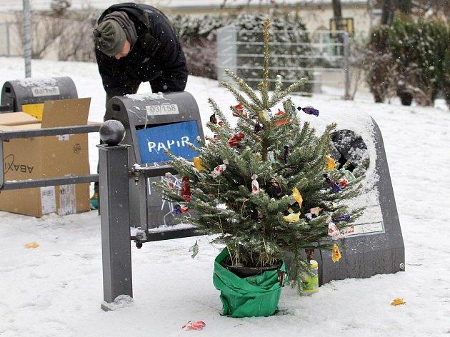 Lidé začnou brzy vyhazovat vánoční stromky. V Rumburku mají více možností, jak se jich zbavit. Více čtěte v našem přehledu.