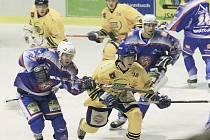 Domácí utkání s Milevskem se děčínským hokejistům příliš nepovedlo.
