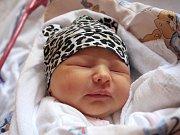 Terezka Malevičová se narodila Ester Malevičové z Děčína 7. prosince ve 14.05 v děčínské porodnici. Měřila 52 cm a vážila 3,78 kg.