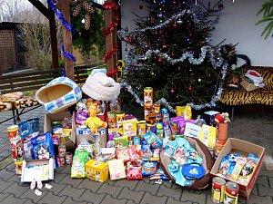 Do děčínského útulku lidé přinesou každý rok i tunu dárků.