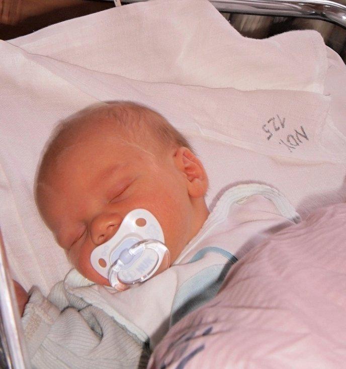 Lence Štolzové ze Šluknova se 13. prosince 2012 v 8.05 v rumburské porodnici narodil syn Zdeneček Štolz. Měřil 50 cm a vážil 3,54 kg.