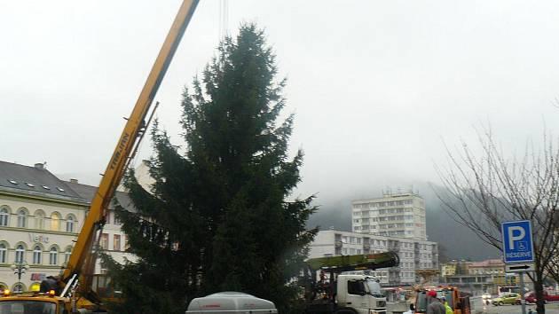 Masarykovo náměstí v Děčíně už zdobí vánoční strom, zatím je ale bez ozdob.