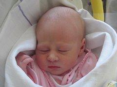 Mamince Šárce Píšové ze Šluknova se 28. února v 11:08 hod. narodila dcera Štěpánka Píšová. Měřila 50 cm a vážila 3,11 kg.