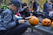 Halloweenské odpoledne v děčínské zoo začne v 15.00 hodin dlabáním dýní.