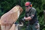 Na Mariánské louce vznikají dřevěné sochy.