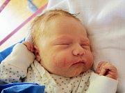 Sofinka Kilianová se narodila Zuzaně Kilianové zDěčína 26. října ve 22.28 vděčínské porodnici. Měřila 51 cm a vážila 3,7 kg.