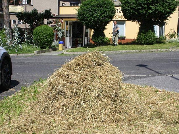 VBynově leží shnilá tráva po sekání.