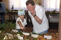 Milovníky hub  potěšila mykologická výstava v kulturním domě ve Šluknově.