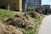 V Bynově leží shnilá tráva po sekání.