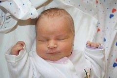 Mamince Janě Filkové z Děčína se 23. ledna v 10.45 narodila v děčínské nemocnici dcera Klárka Filková. Měřila 50 cm a vážila 3,28 kg.