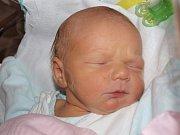 Darině Svobodové z Varnsdorfu se 9. září v 8:19 v rumburské porodnici narodil syn Jan Svoboda. Měřil 51 cm a vážil 3,15 kg.
