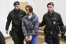 Muž obviněný z vraždy devatenáctiletého Dominika je ve vazbě.