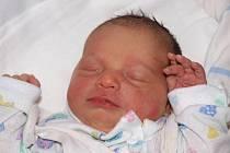Haně Šulcové z Varnsdorfu se 15.února ve 12.10 v rumburské porodnici narodila dcera Nikola Uhlířová.Měřila 48 cm a vážila 3,1 kg.