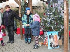 V děčínském útulku si dárci o vánočních svátcích doslova podávali dveře.