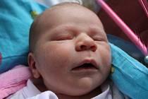 Terezka Gregorová se narodila Kateřině Gregorové z Děčína 16. srpna v 8.36 v děčínské porodnici. Měřila 52 cm a vážila 3,56 kg.