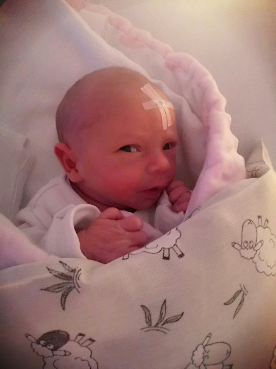 Jitce Hlušičkové a Tomáši Peroutkovi se 29. května v 8:37 hodin narodila dcera Natálie Peroutková. Měřila 46 cm a vážila 2,54 kg.