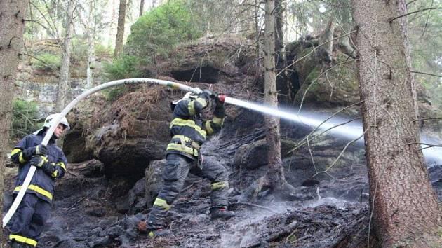 Hasiči zasahovali při požáru lesa u Doubice