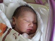 Merry Holubová se narodila Vendule a Lubošovi Holubovým z Rumburku 5. listopadu v 11.50. Měřila 50 cm a vážila 3,65 kg.