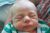 Kateřině Adámkové z Děčína se 29. července v 1:09 v děčínské porodnici narodil syn Teodor Adámek. Měřil 51 cm a vážil 3,1 kg.