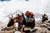 Do nejvyššího pohoří světa zavede diváky festivalu dokumentárních filmů Expediční kamera film Himalaya.