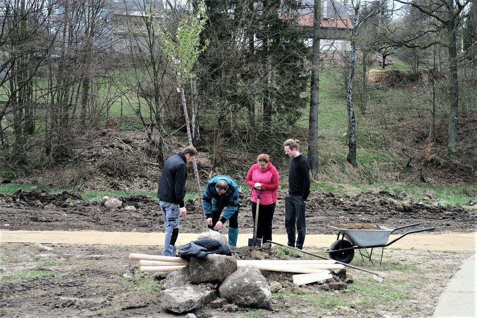 Ve Vilémově vysadili nové stromy.