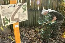 Stezka stromů v děčínské zoo.