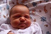 Lenka Rychtaříková se narodila Lence Nídrové a Jakubu Rychtaříkovi z Děčína 10. dubna ve 20.32 v děčínské porodnici. Vážila 3,62 kg.