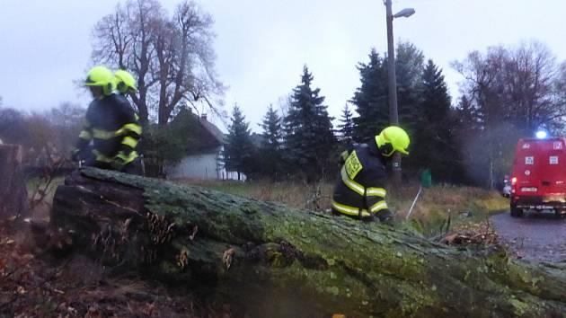 Vítr značně poškodil mohutný strom na Sněžníku. Na místo vyjeli místní hasiči a strážníci.