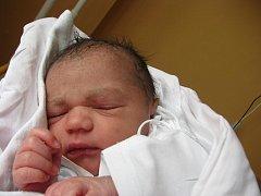 Heleně Šándorové z Děčína se v ústecké porodnici narodil 29. března 2010 v 9.26 hodin dcera Temilayo Ellen Ogunwale. Měřila 47 cm a vážila 2,9 kg.
