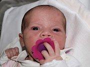 Romaně Pavelkové z Rumburka se 16. června v 11:33 v rumburské porodnici narodila dcera Patricia Pavelková. Měřila 51 cm a vážila 3,62 kg.