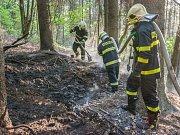 Požár lesního porostu u Jiřetína pod Jedlovou.