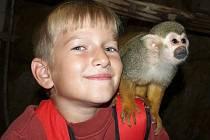 Zoo slavila šedesáté narozeniny