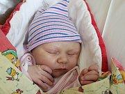 Natálie Kerberová se narodila Gabriele a Josefovi Kerberovým z Království 16. října ve 20.12. Měřila 51cm a vážila 3,40 kg.