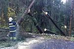 Vichřice udeřila i mezi Brtníky a Vlčí Horou na Šluknovsku