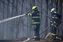 Deset jednotek hasičů bojuje u Děčína s lesním požárem.