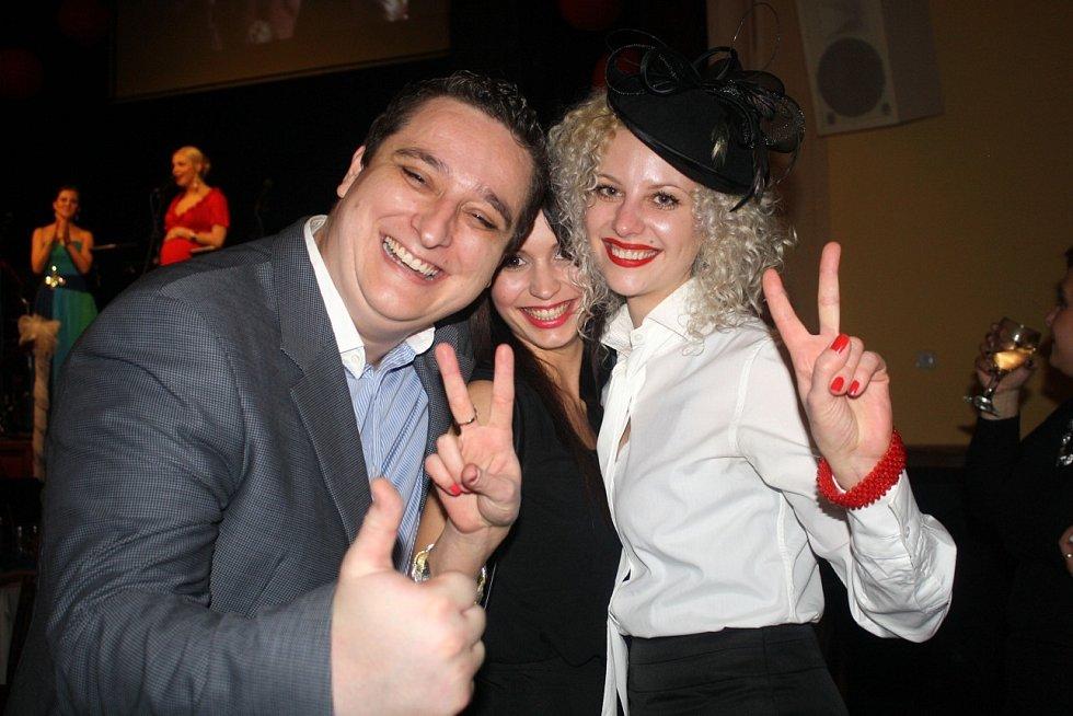 Ples BK Děčín, leden 2014