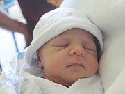 Elisabeth Behrová se narodila Michaele Behrové z Děčína 12. října ve 2.00 v děčínské porodnici. Vážila 3,11 kg.