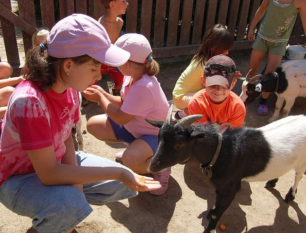 Dětský letní tábor je zaměřený na ekologii, prázdniny tu tráví dětí z Děčínska i Ústecka ve společnosti zvířat