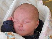 Kamile Košové z České Kamenice se 22. května ve 14:20 hod. narodil syn Alexej Křivák. Měřil 50 cm a vážil 3,46 kg.