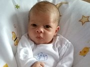 David Volešák se narodil Láďovi a Kátě Volešákové 27. července v 1.30 v děčínské porodnici. Vážil 3,12 kg a měřil 49 cm.