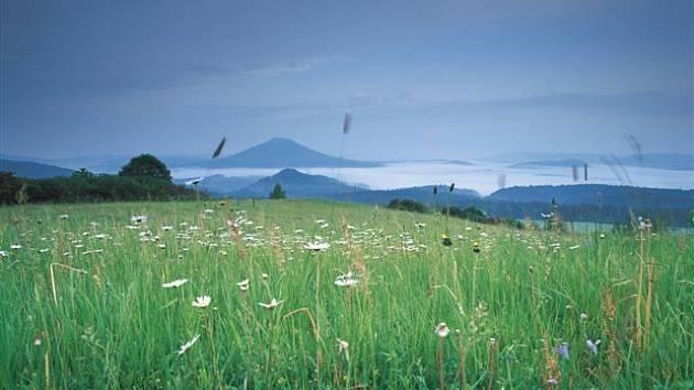 Louky, na kterých dochází k ručnímu sečení porostů, patří svojí botanickou a živočišnou rozmanitostí  k chloubám  krajina Českosaského Švýcarska.