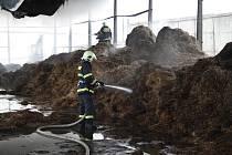 Hasiči bojovali s požárem v Malšovicích několik hodin. Na místě zasahovali i dobrovolnici.