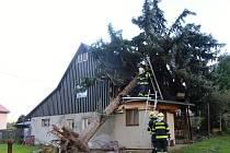 Hasiči likvidují strom spadlý na dům v Děčíně - Horním Oldřichově. Jen do 14 hodin měli v pondělí hasiči celkem 30 výjezdů k odklízení škod po řádění vichřice.