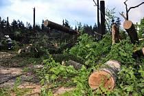 Jedlovou se v květnu 2010 prohnala smršť.