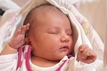 Janě Perknerové z Jiříkova se 26.března ve 12.53 v rumburské porodnici narodila dcera Sofie Bajzová. Měřila 46 cm a vážila 2,92 cm.