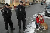 Děčínští strážníci se více zaměřili na kontrolu pejskařů. Na sníku Štěpán Krátký, který strážníkům přísahal, že po svém psovi vždy poctivě uklízí.